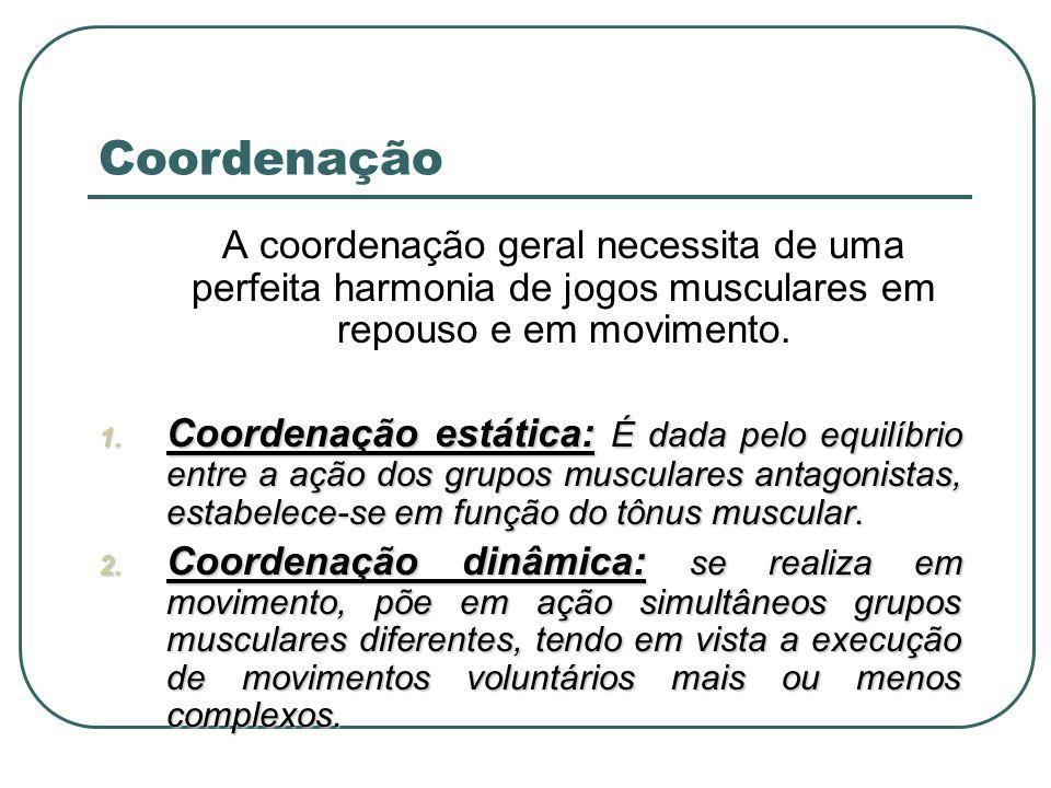 Coordenação A coordenação geral necessita de uma perfeita harmonia de jogos musculares em repouso e em movimento.