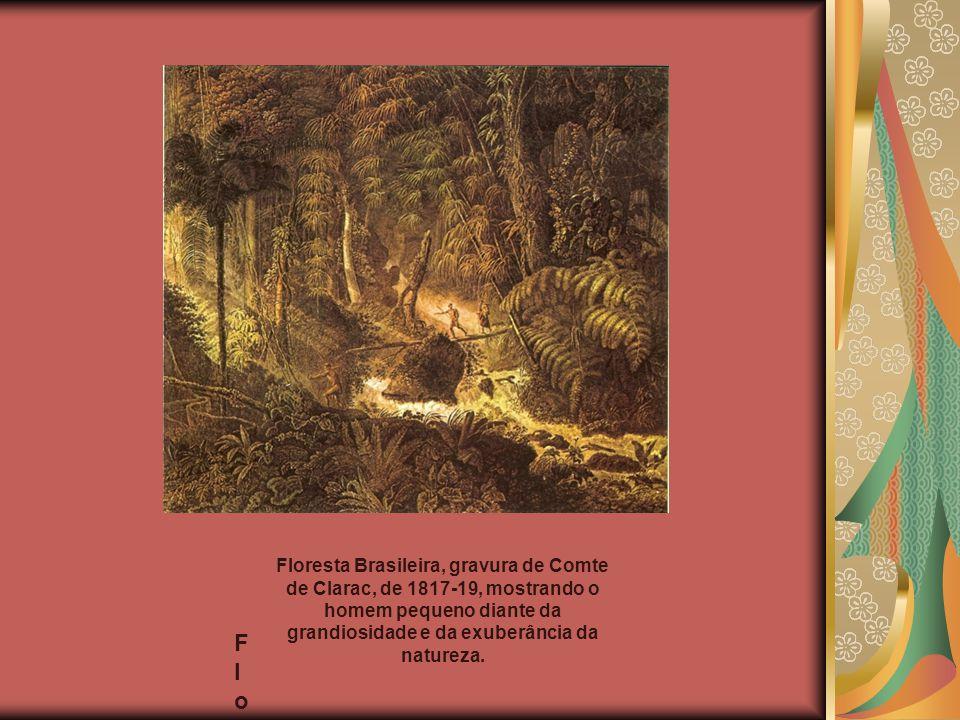 Floresta Brasileira, gravura de Comte de Clarac, de 1817-19, mostrando o homem pequeno diante da grandiosidade e da exuberância da natureza.