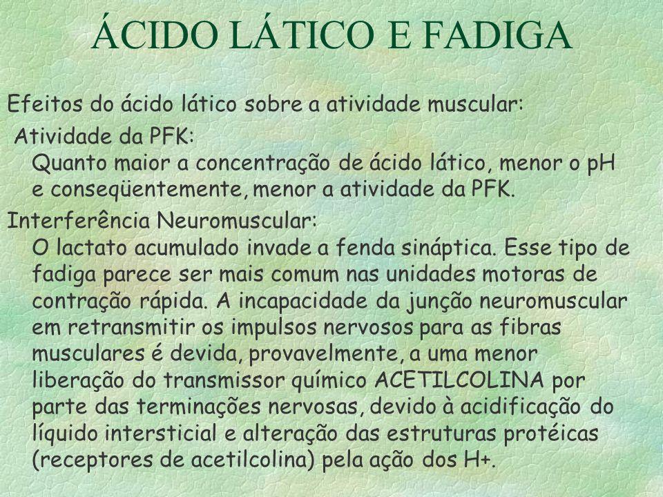 ÁCIDO LÁTICO E FADIGA Efeitos do ácido lático sobre a atividade muscular: