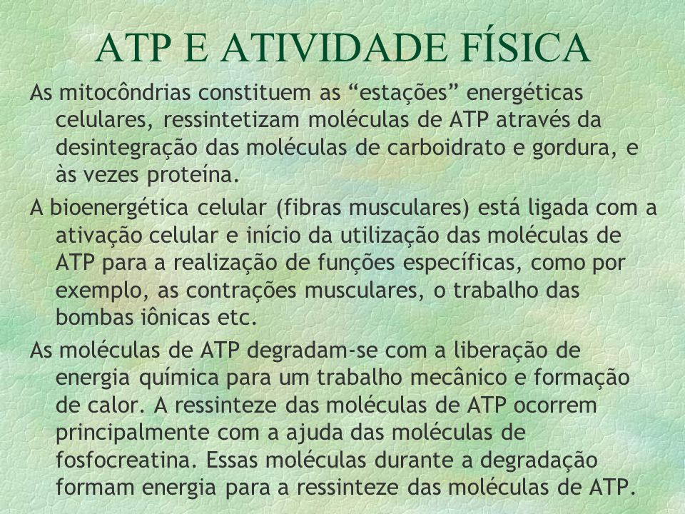 ATP E ATIVIDADE FÍSICA