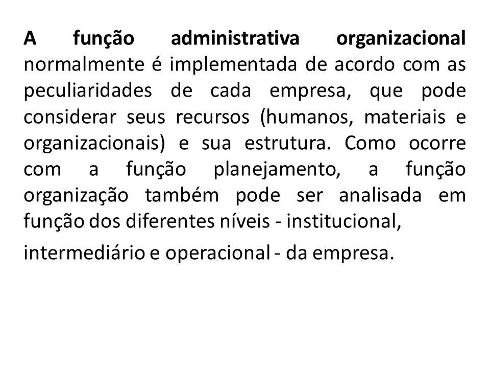 A função administrativa organizacional normalmente é implementada de acordo com as peculiaridades de cada empresa, que pode considerar seus recursos (humanos, materiais e organizacionais) e sua estrutura. Como ocorre com a função planejamento, a função organização também pode ser analisada em função dos diferentes níveis - institucional,
