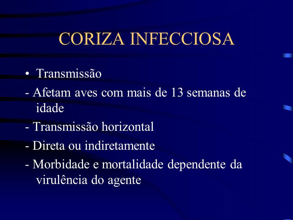 CORIZA INFECCIOSA Transmissão
