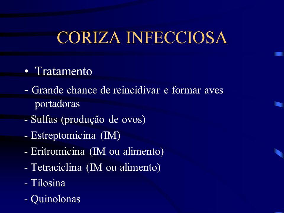 CORIZA INFECCIOSA Tratamento