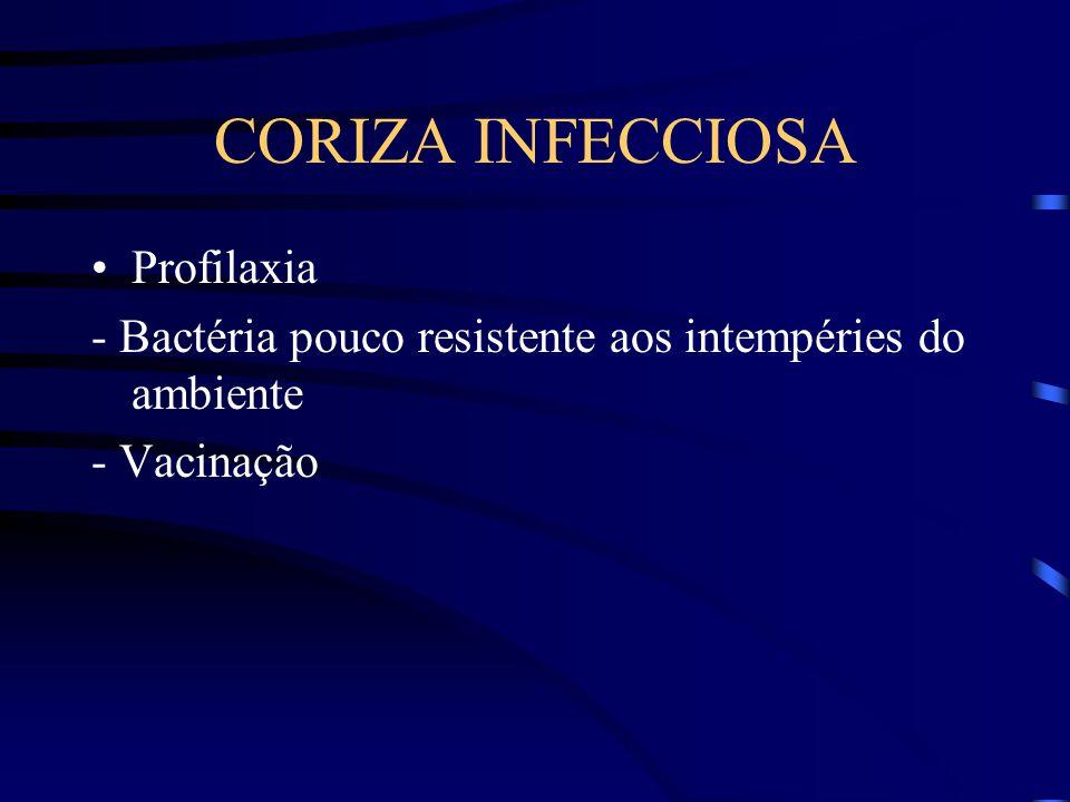 CORIZA INFECCIOSA Profilaxia
