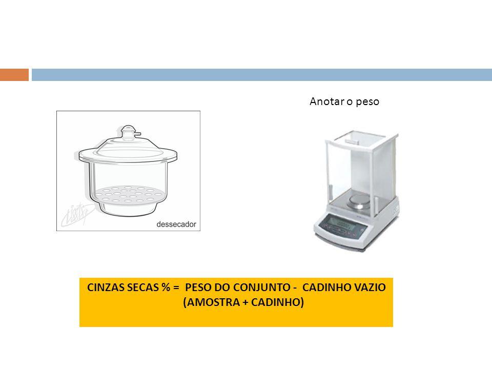 CINZAS SECAS % = PESO DO CONJUNTO - CADINHO VAZIO (AMOSTRA + CADINHO)
