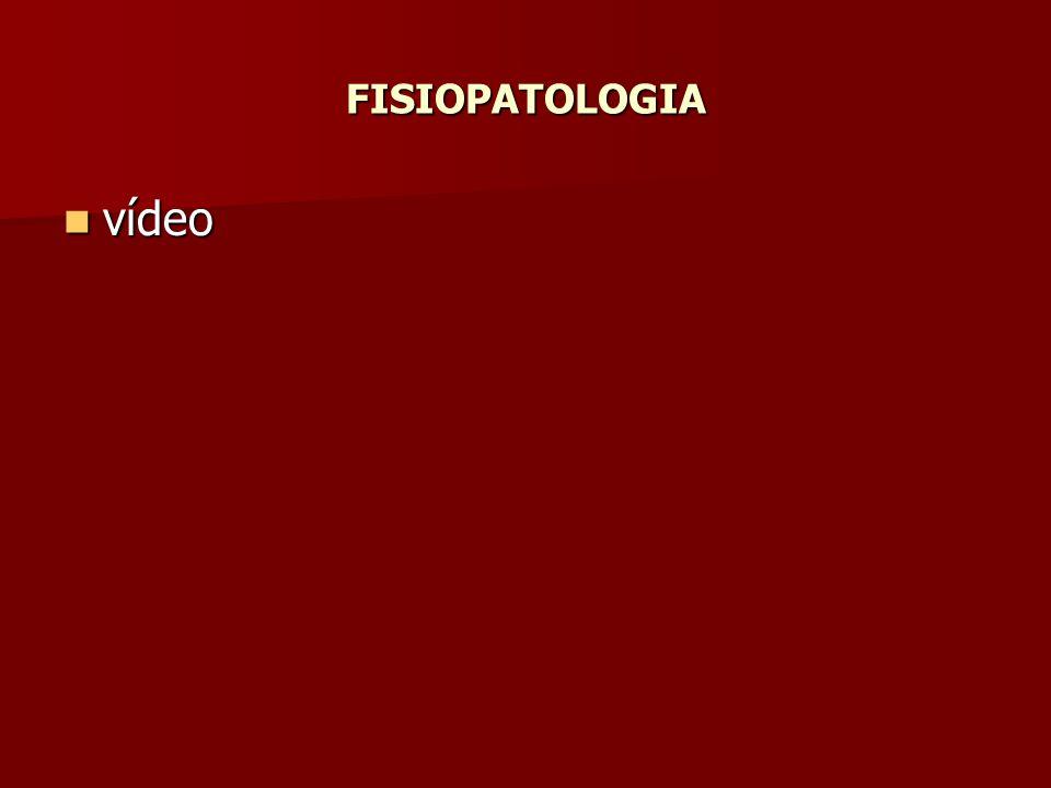 FISIOPATOLOGIA vídeo