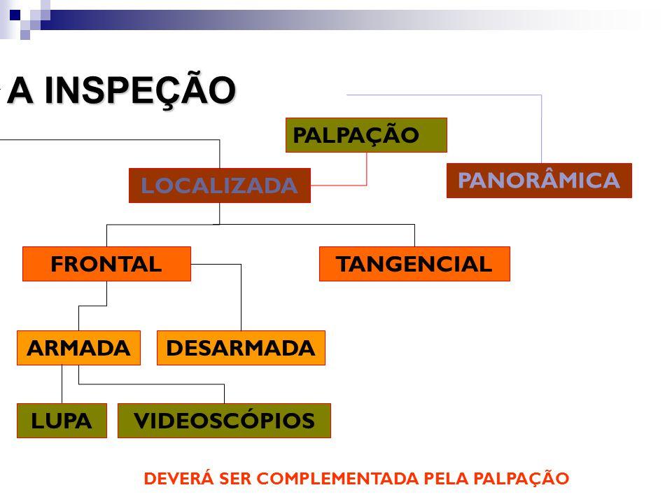 A INSPEÇÃO PALPAÇÃO PANORÂMICA LOCALIZADA FRONTAL TANGENCIAL ARMADA