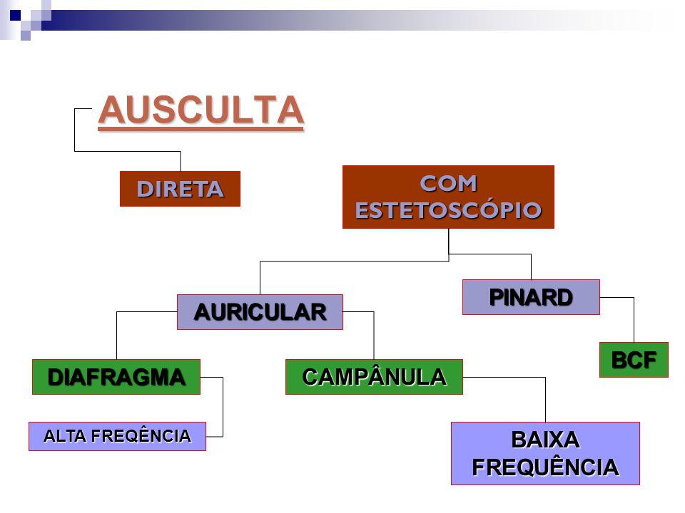 AUSCULTA COM ESTETOSCÓPIO DIRETA PINARD AURICULAR BCF DIAFRAGMA