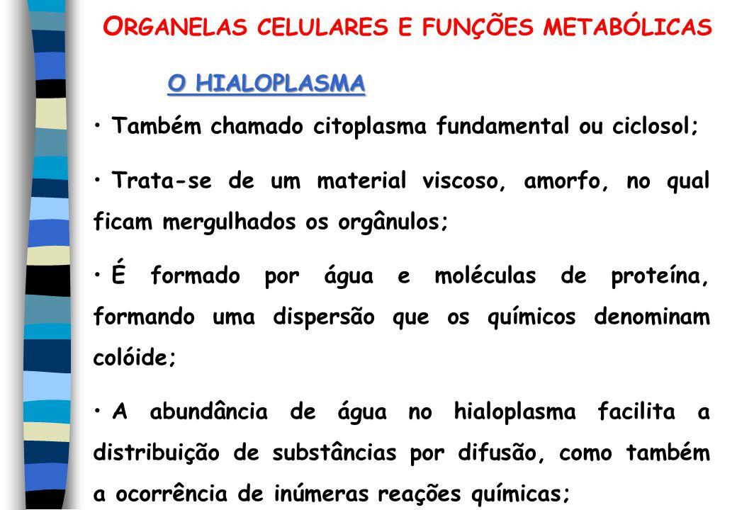 ORGANELAS CELULARES E FUNÇÕES METABÓLICAS
