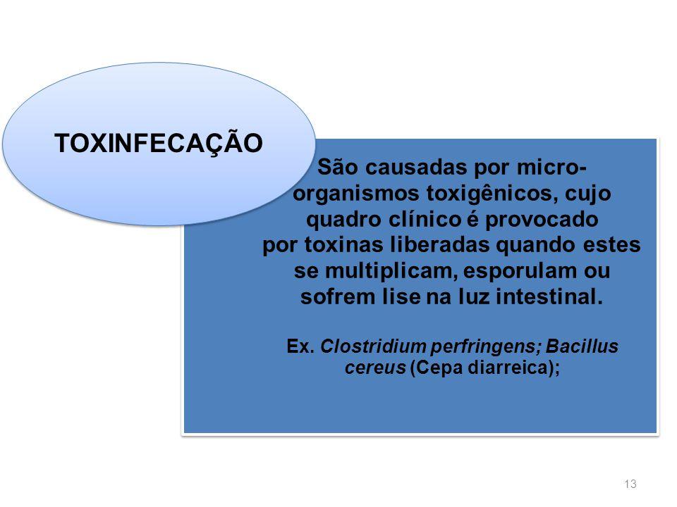 Ex. Clostridium perfringens; Bacillus cereus (Cepa diarreica);