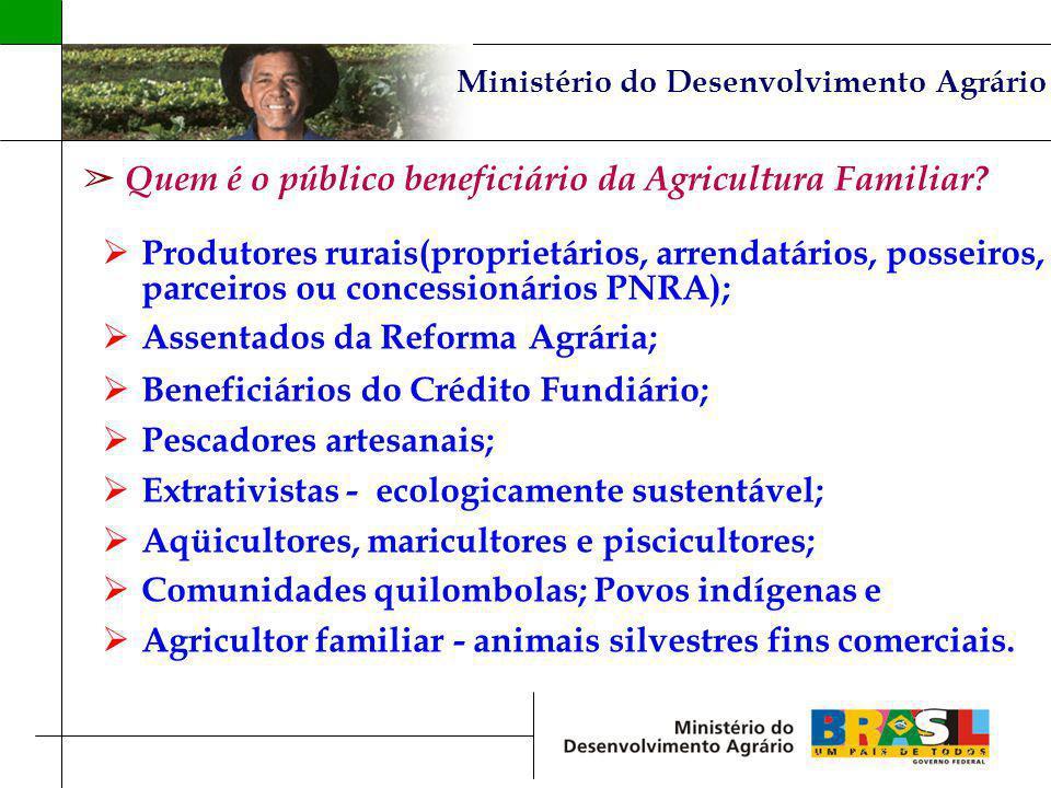 Quem é o público beneficiário da Agricultura Familiar