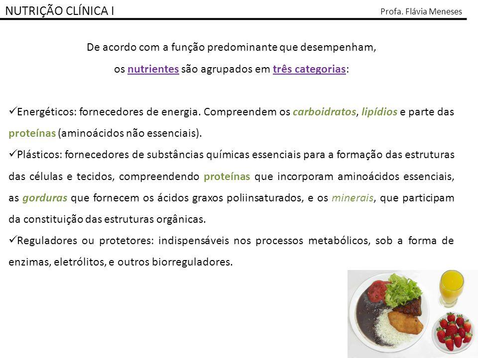 NUTRIÇÃO CLÍNICA I Profa. Flávia Meneses. De acordo com a função predominante que desempenham, os nutrientes são agrupados em três categorias: