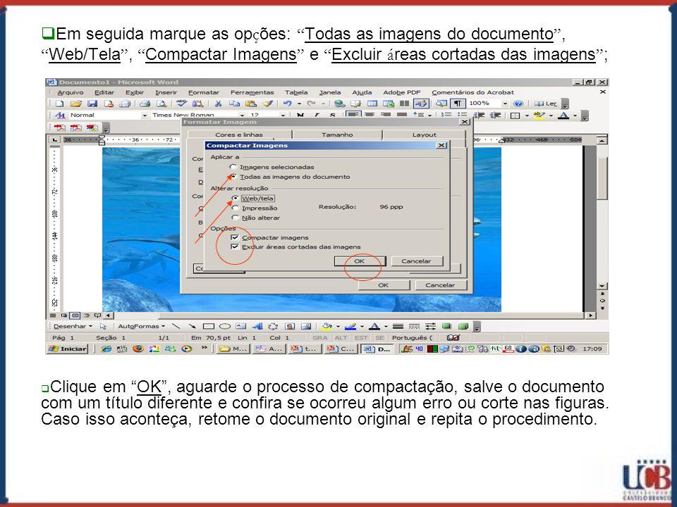 Em seguida marque as opções: Todas as imagens do documento , Web/Tela , Compactar Imagens e Excluir áreas cortadas das imagens ;