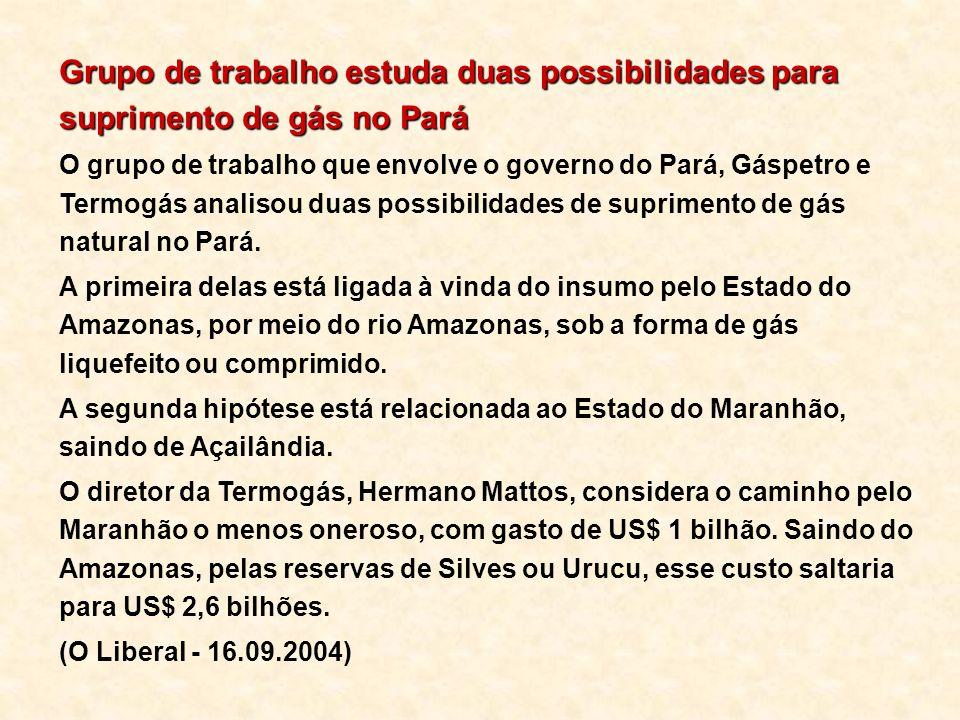 Grupo de trabalho estuda duas possibilidades para suprimento de gás no Pará