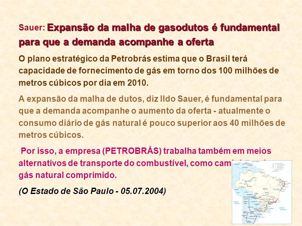 Sauer: Expansão da malha de gasodutos é fundamental para que a demanda acompanhe a oferta