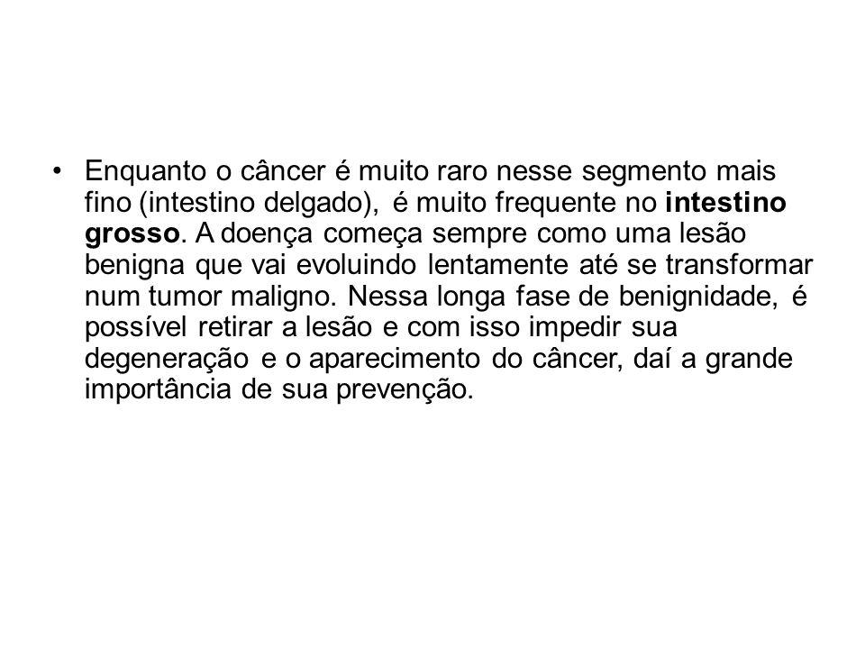 Enquanto o câncer é muito raro nesse segmento mais fino (intestino delgado), é muito frequente no intestino grosso.
