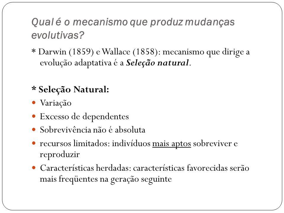 Qual é o mecanismo que produz mudanças evolutivas