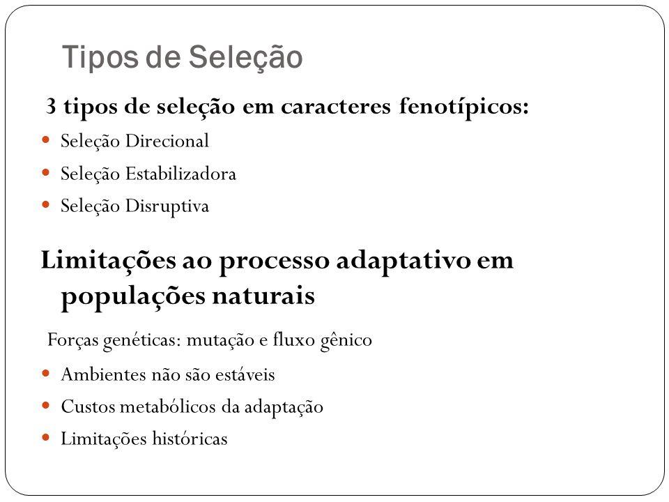 Tipos de Seleção 3 tipos de seleção em caracteres fenotípicos: Seleção Direcional. Seleção Estabilizadora.