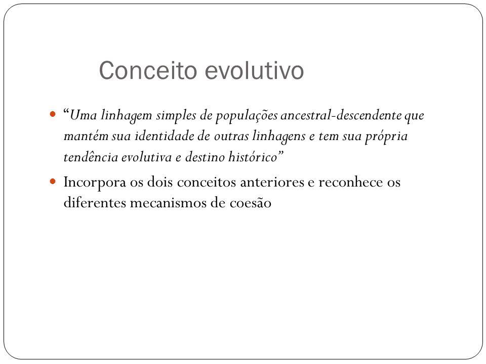 Conceito evolutivo