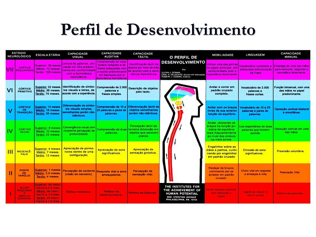 Perfil de Desenvolvimento