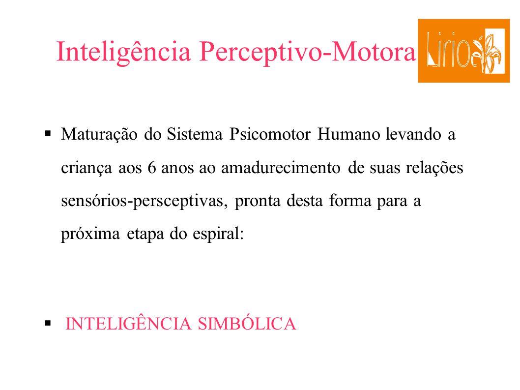 Inteligência Perceptivo-Motora