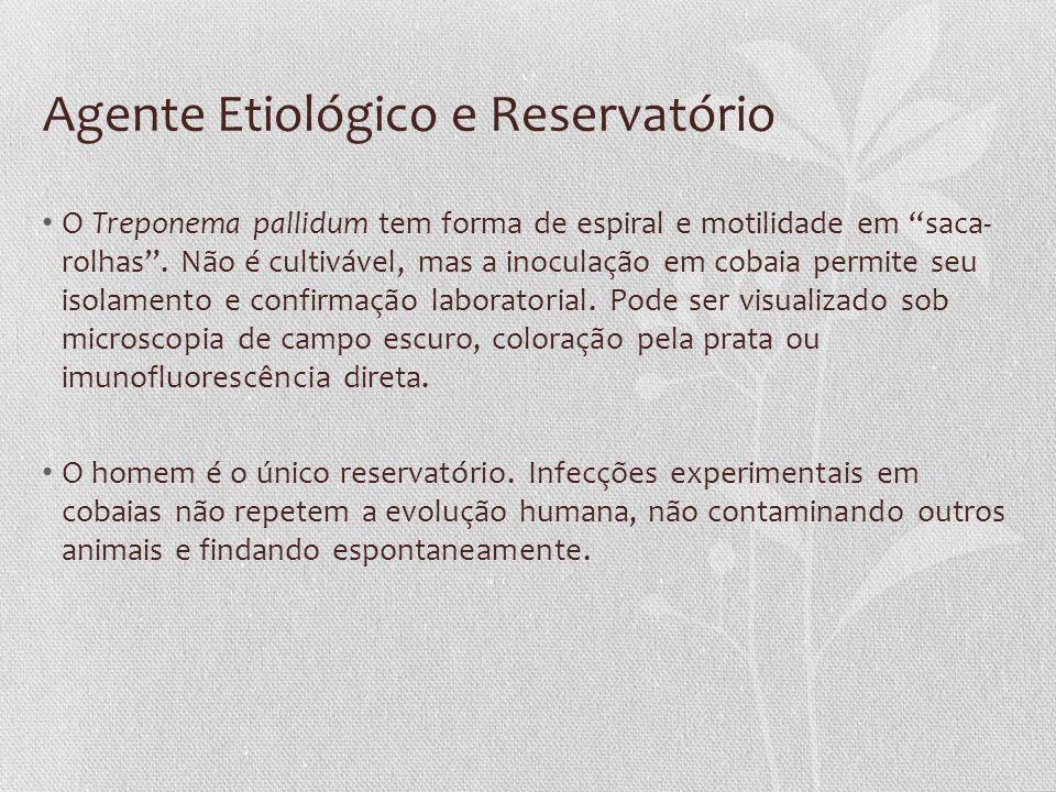 Agente Etiológico e Reservatório