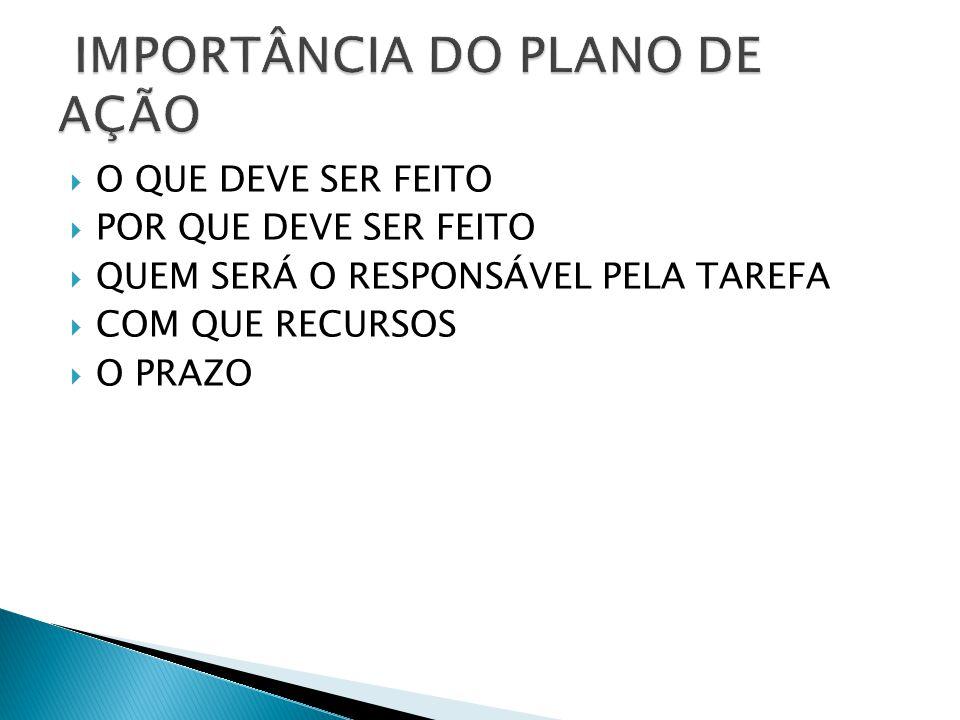 IMPORTÂNCIA DO PLANO DE AÇÃO