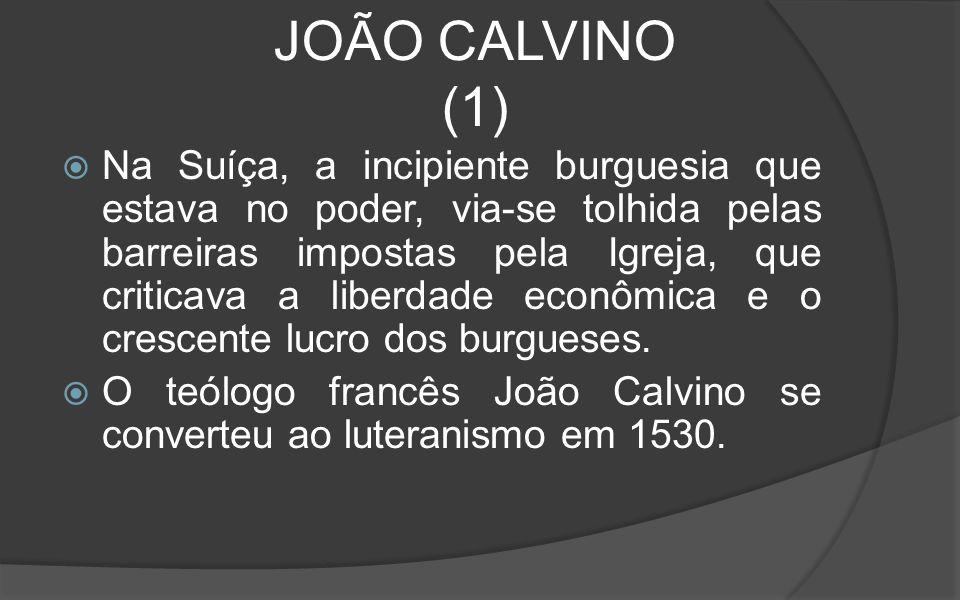 JOÃO CALVINO (1)