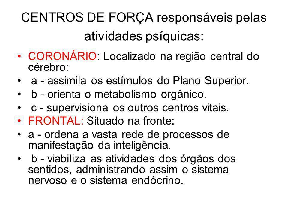 CENTROS DE FORÇA responsáveis pelas atividades psíquicas: