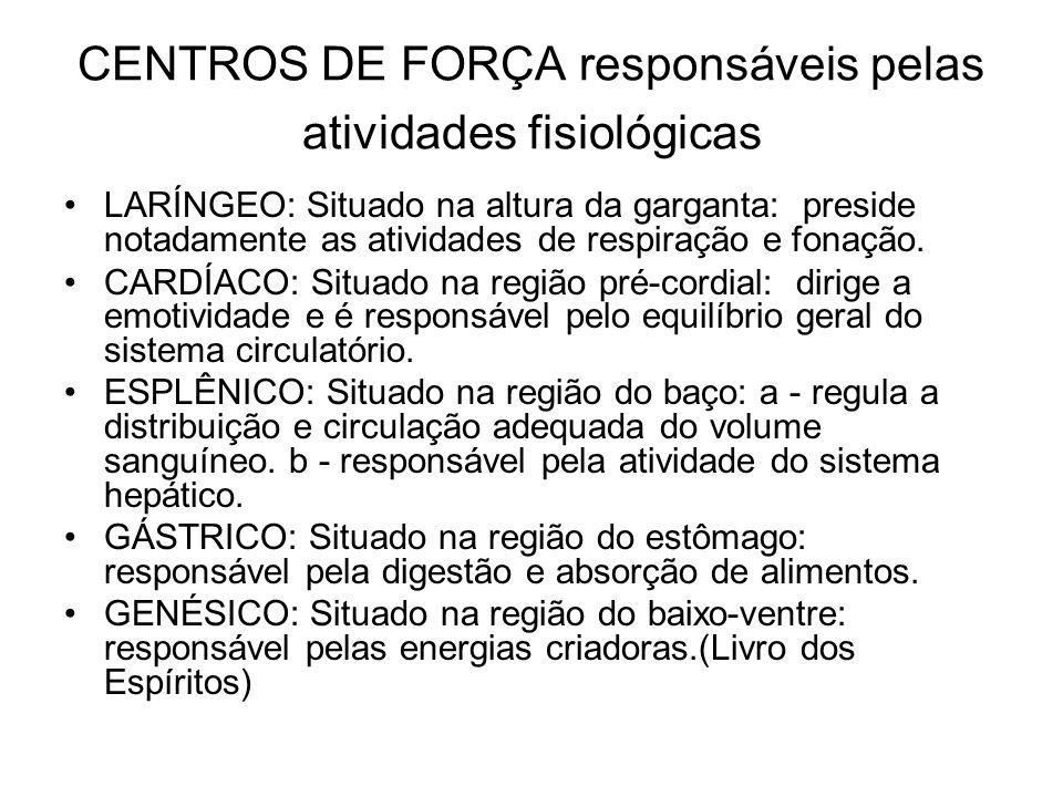 CENTROS DE FORÇA responsáveis pelas atividades fisiológicas