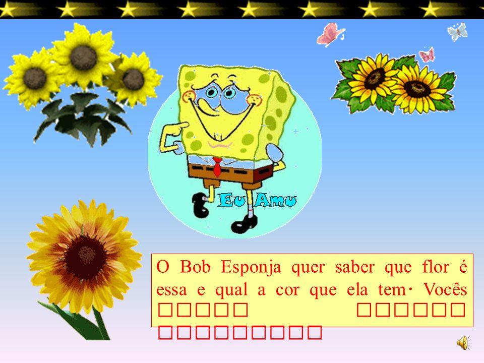 O Bob Esponja quer saber que flor é essa e qual a cor que ela tem
