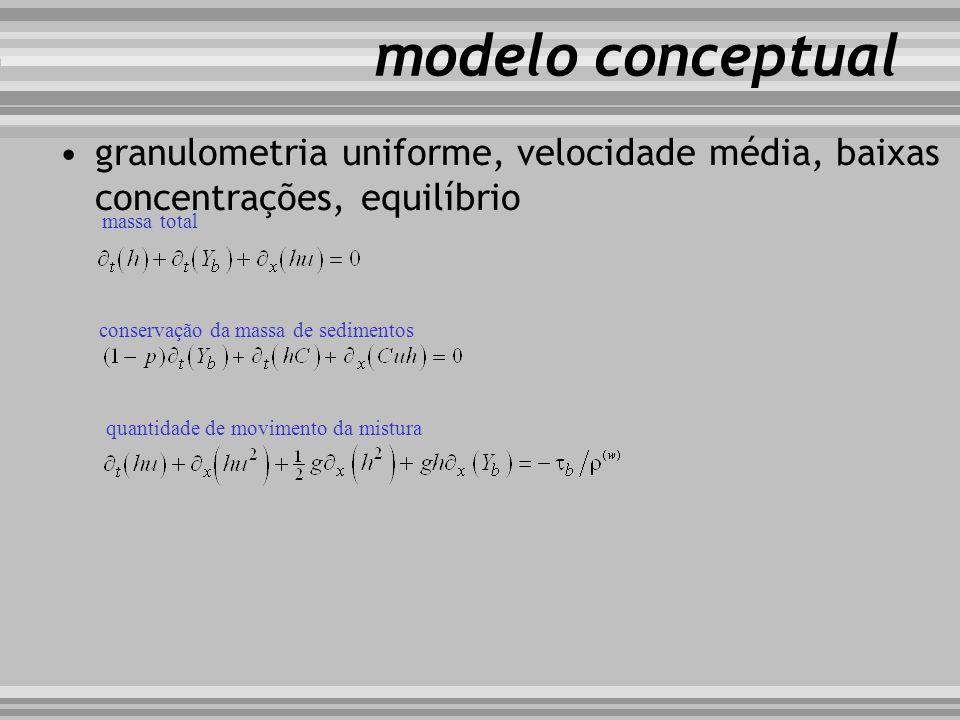 modelo conceptual granulometria uniforme, velocidade média, baixas concentrações, equilíbrio. massa total.