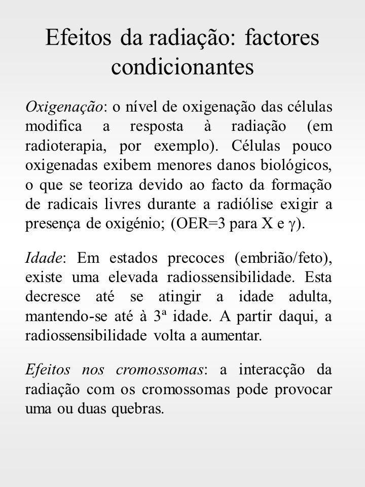 Efeitos da radiação: factores condicionantes