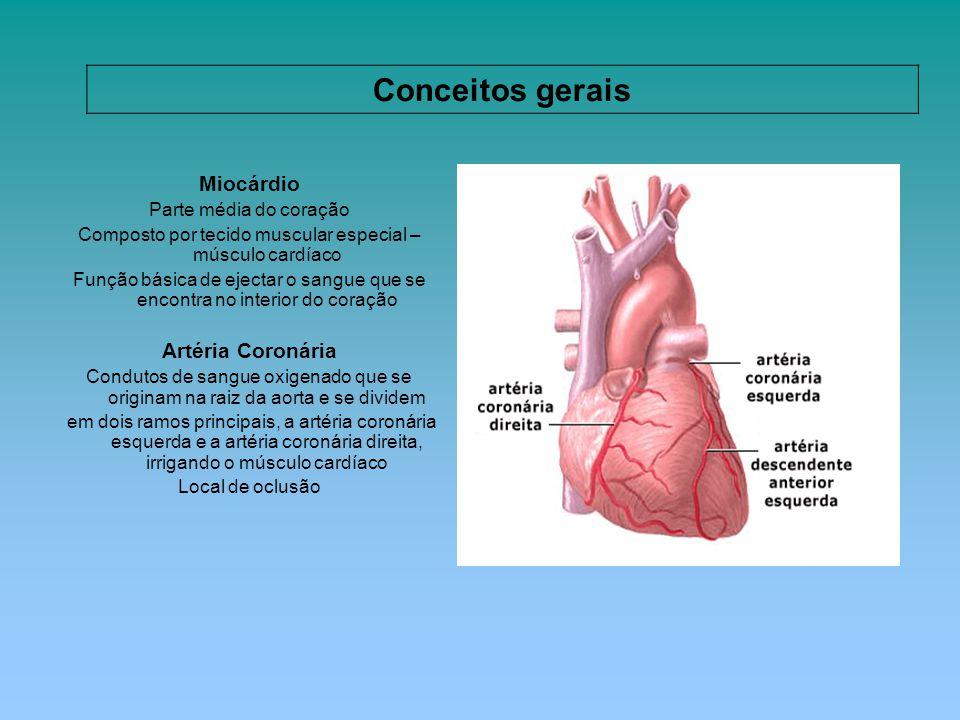 Composto por tecido muscular especial – músculo cardíaco