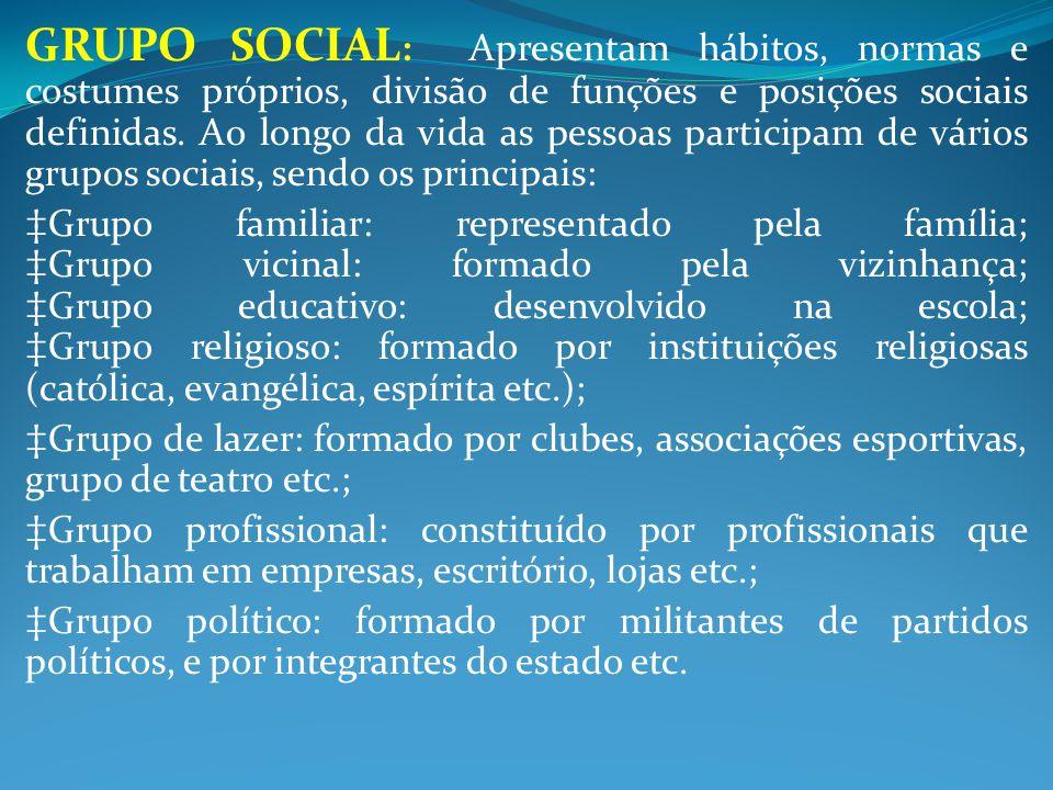 GRUPO SOCIAL: Apresentam hábitos, normas e costumes próprios, divisão de funções e posições sociais definidas. Ao longo da vida as pessoas participam de vários grupos sociais, sendo os principais:
