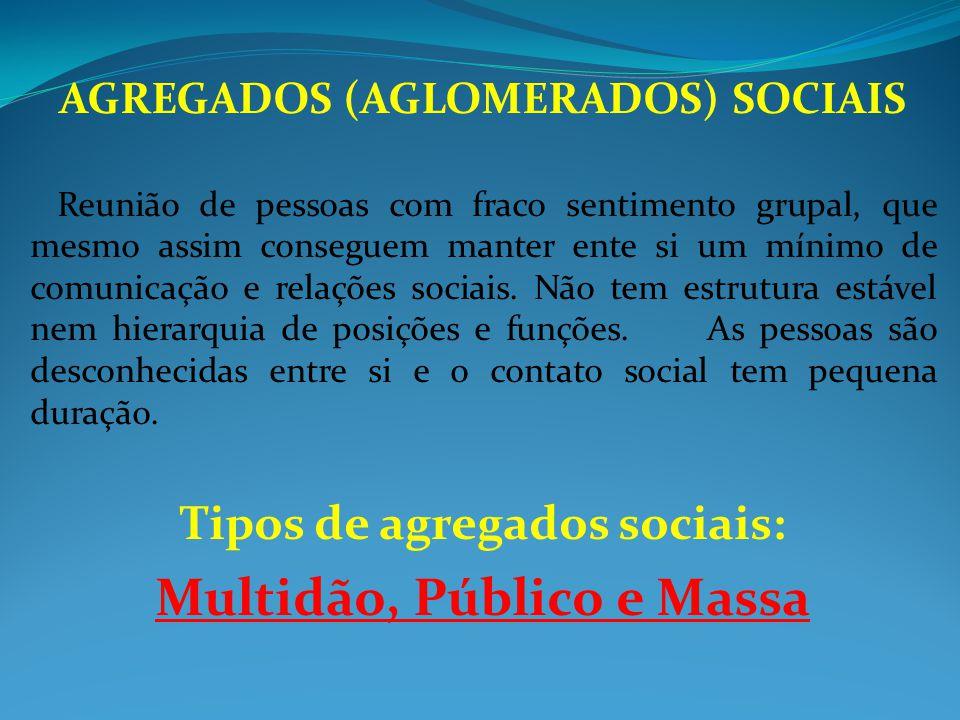 AGREGADOS (AGLOMERADOS) SOCIAIS Tipos de agregados sociais: