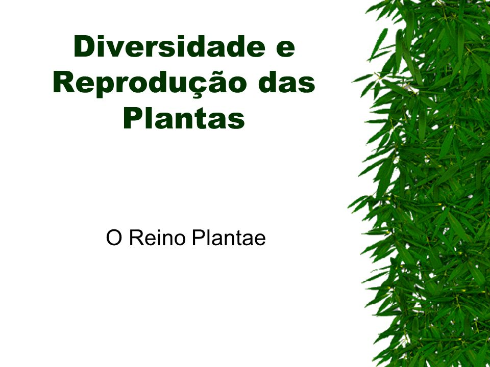 Diversidade e Reprodução das Plantas