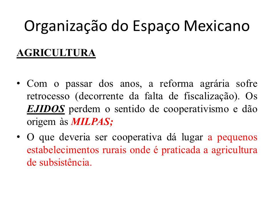 Organização do Espaço Mexicano