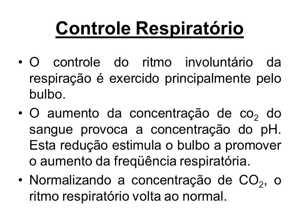 Controle Respiratório