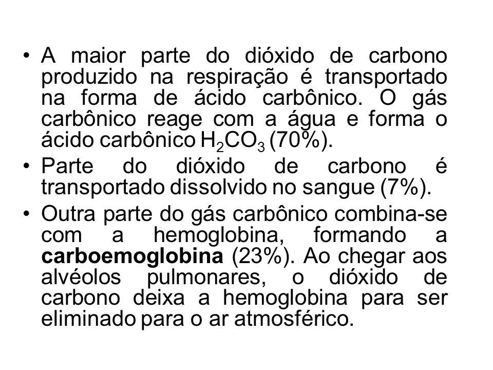 A maior parte do dióxido de carbono produzido na respiração é transportado na forma de ácido carbônico. O gás carbônico reage com a água e forma o ácido carbônico H2CO3 (70%).