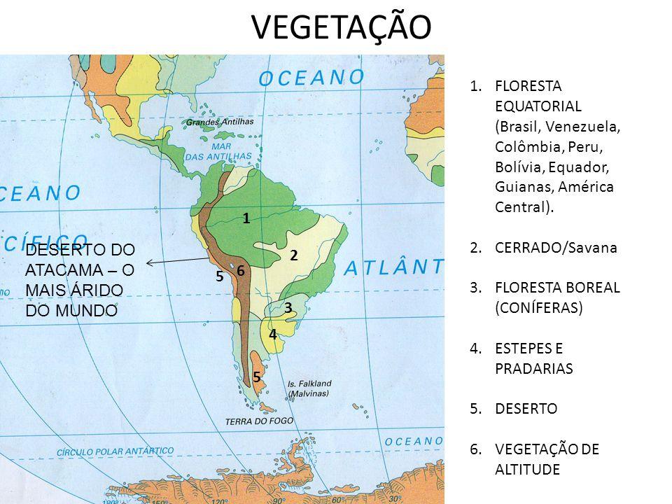 VEGETAÇÃO FLORESTA EQUATORIAL (Brasil, Venezuela, Colômbia, Peru, Bolívia, Equador, Guianas, América Central).