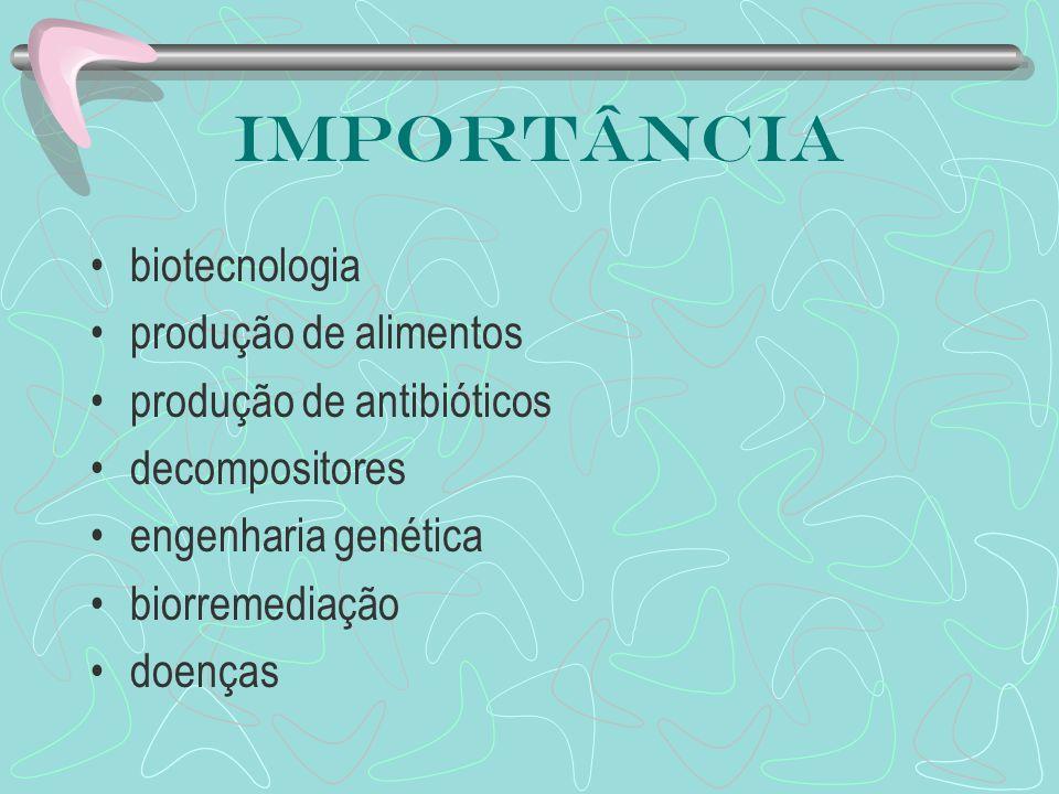 Importância biotecnologia produção de alimentos