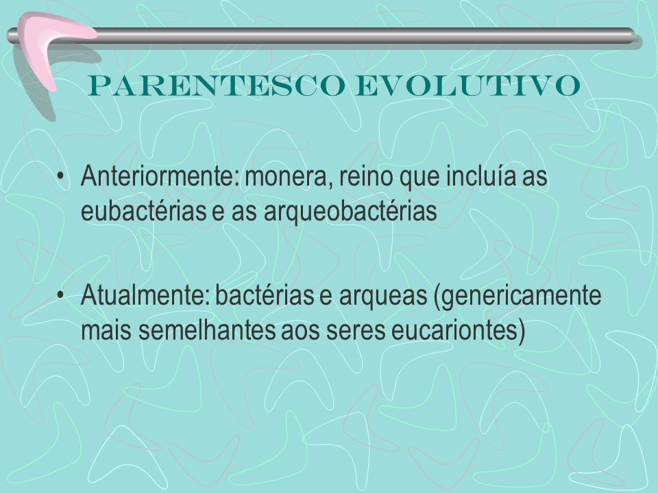 Parentesco evolutivo Anteriormente: monera, reino que incluía as eubactérias e as arqueobactérias.