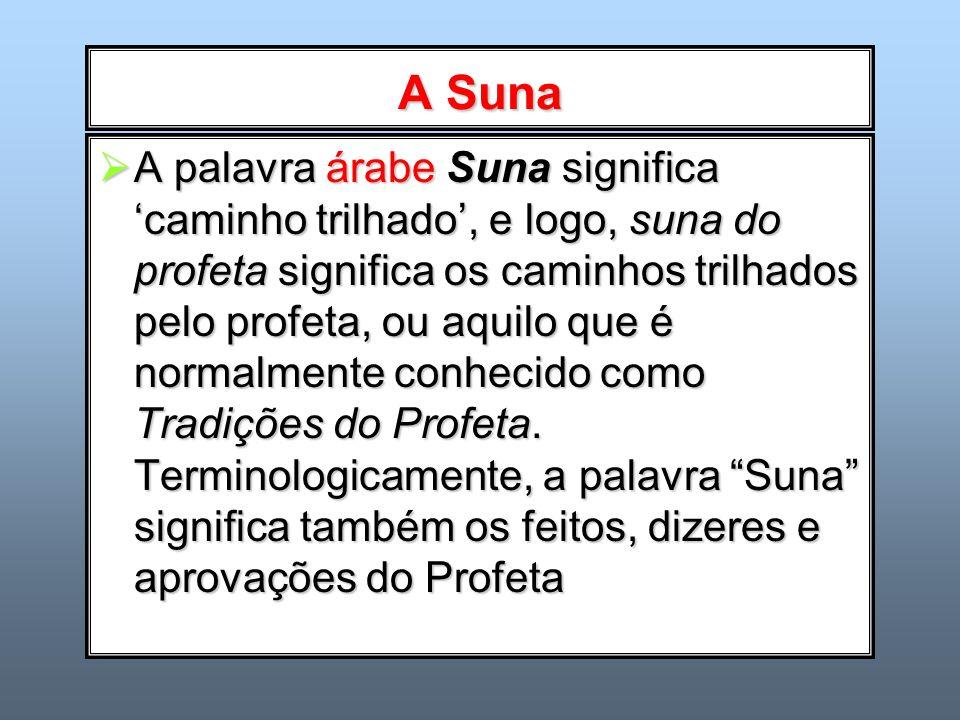 A Suna