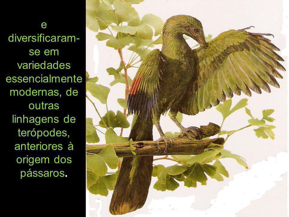 e diversificaram-se em variedades essencialmente modernas, de outras linhagens de terópodes, anteriores à origem dos pássaros.