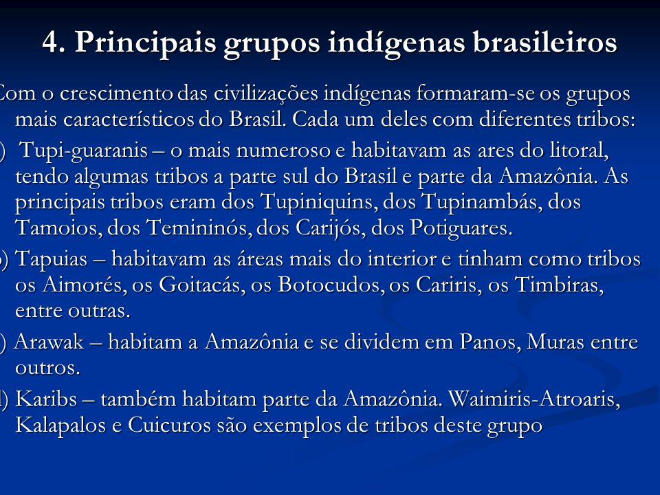 4. Principais grupos indígenas brasileiros