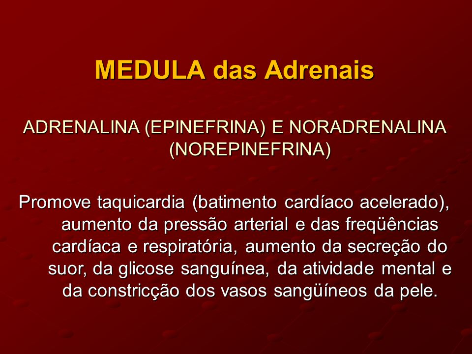 ADRENALINA (EPINEFRINA) E NORADRENALINA (NOREPINEFRINA)