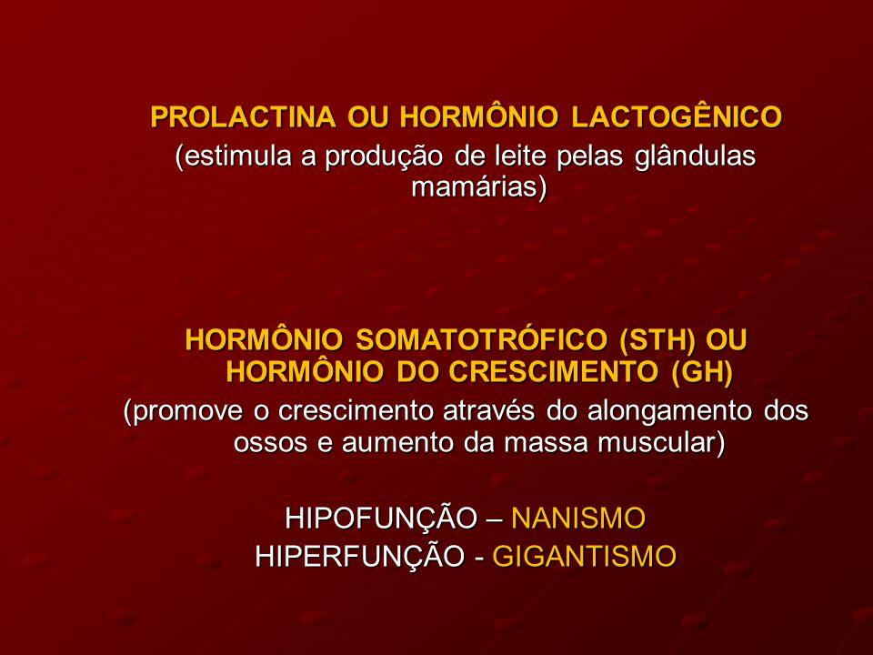 PROLACTINA OU HORMÔNIO LACTOGÊNICO