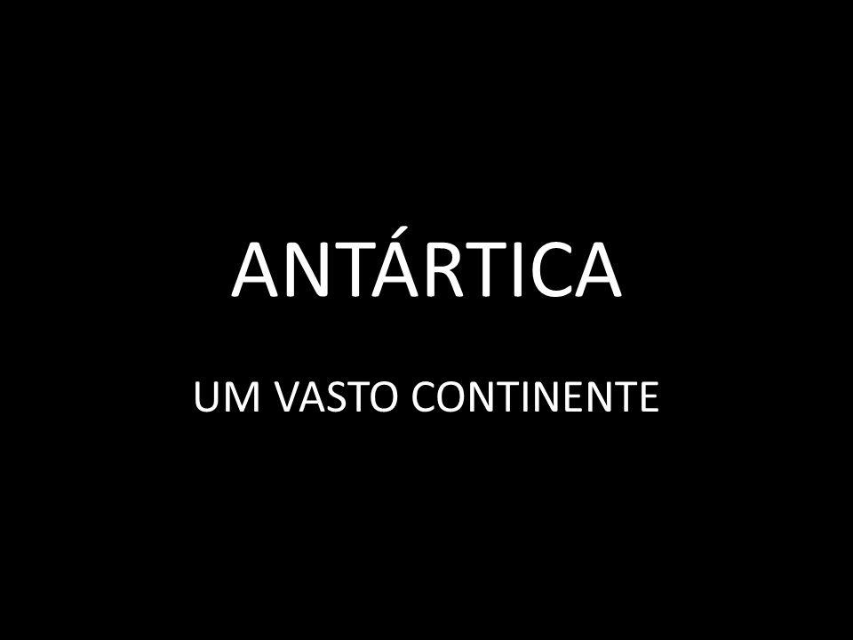 ANTÁRTICA UM VASTO CONTINENTE