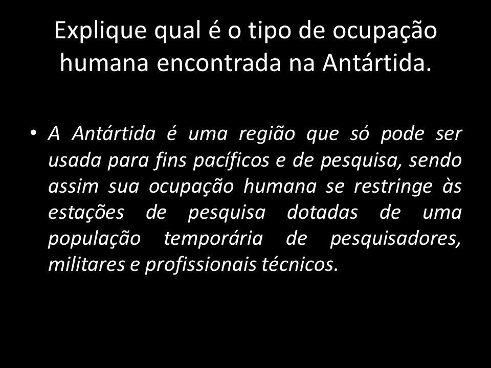 Explique qual é o tipo de ocupação humana encontrada na Antártida.